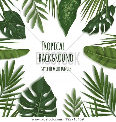 Vector frame of tropical leaves. Trendy summer tropical concept. Style of wild jungle. Background for the design of invitations greeting cards etc.