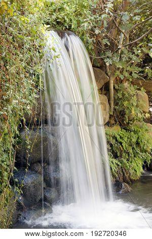 A waterfall among green foliage. Streams of water