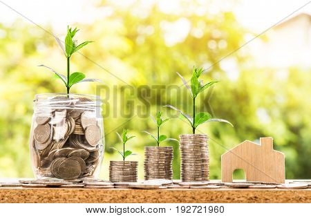 step of coins stacks and coins in jar with wooden house model, Time of Money Business success growing concept, Trees on pile of coins money with over sun flare silhouette tone.