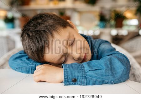 Little boy 4-5 years old, sleeping sitting at a table in a bright room