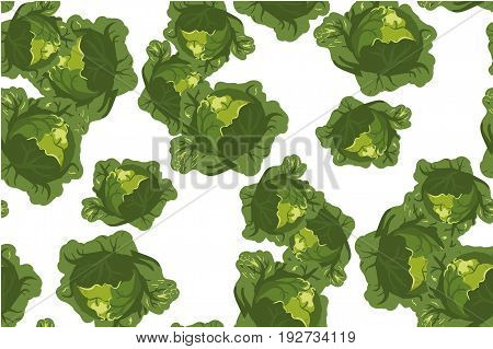 Brussel sprout hand drawn vector seamless pattern. Vegetable artistic style objects. Isolated brussel cabbage set. Detailed vegetarian food drawing. Farm market product.