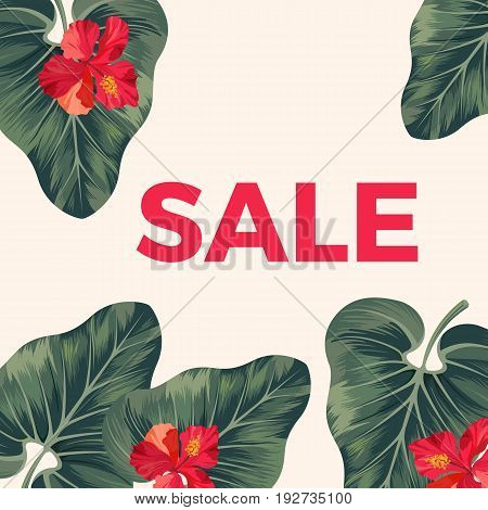 Red sale sign on promo poster with leaves and flowers. Big tropical alocasia plant leaves and exotic red hibiscus blossom vector illustration