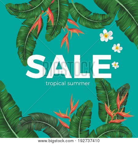 Sale tropical summer poster with green leaves and exotic yellow and white flowers vector illustration. Banner proclaiming reduction of prices