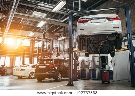 Cars In Autoservice