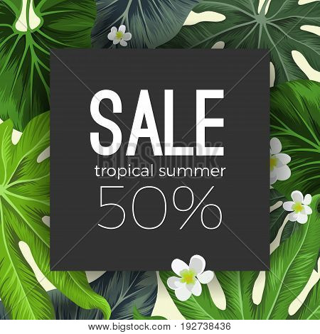 Special tropical summer sale black card on background with exotic plants as green palm tree leaves and white Plumeria white flowers