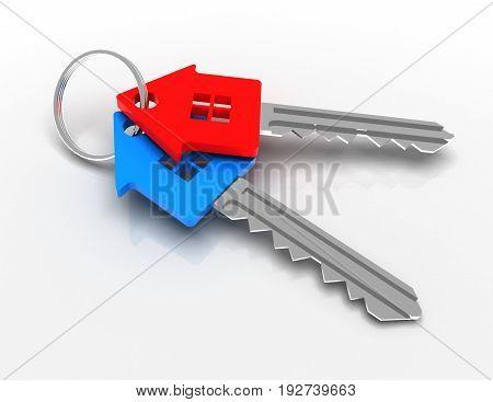 house-shape key concept . 3d rendered illustration