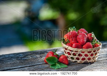 Juicy Strawberries In A Wicker Basket Wooden Table, Against The Backdrop Of A Beautiful Background G