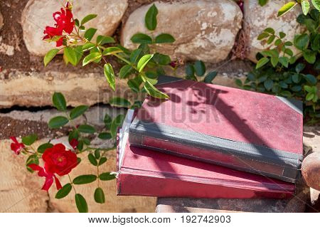Two vintage books with flowers and stone wall background