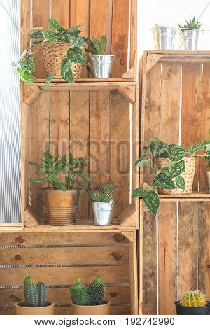 Decorative stylish DIY shelf made of wooden fruit crates