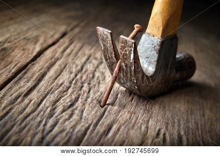 Pulling rusty nail out of old wood with carpenter's hammer Selective focus
