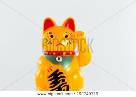 Chinese good luck cat on white background