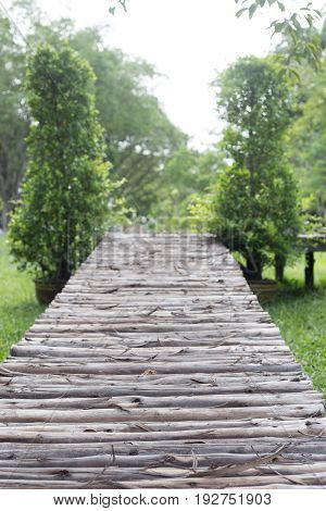 wooden foot bridge in the park with trees.
