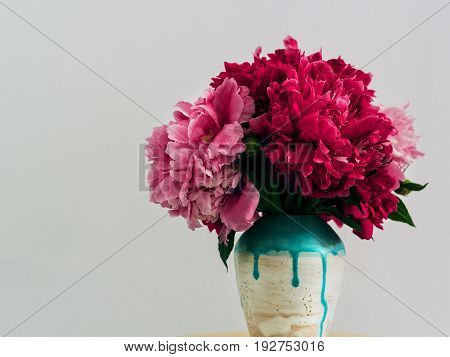 Red peonies in a handmade vase Fresh bouquet of pink and red peonies in white-blue ceramic vase Bright floral bunch on white wall, copy space