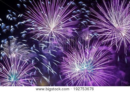 Brightly colorful fireworks at night on twilight background.