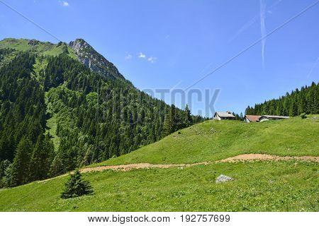 The mid-June rural landscape of the Carnic Alps near Paularo Friuli Venezie Giulia north east Italy. poster