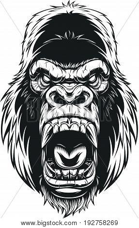 Vector illustration ferocious gorilla head on background