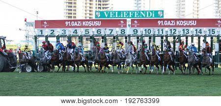 Istanbul Horse Race