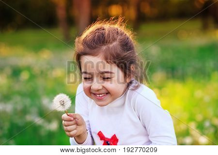 Beautiful little child with dandelion flower in sunny summer park. Happy cute kid having fun outdoors at sunset.