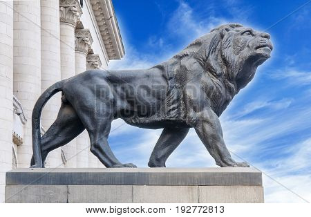 Big ancient archeology statue of lion close