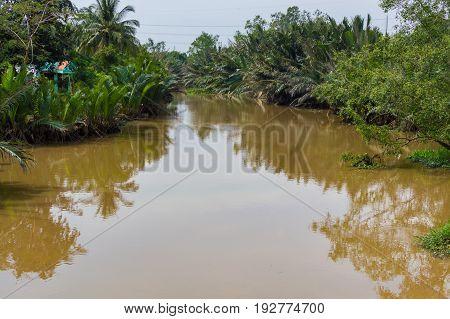 Narrow Channel Of Mekong Delta Vietnam