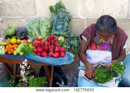 VALLADOLID MEXICO - FEBRUARY 11: Women with fruits and vegetables for sale in Valladolid Mexico on February 11 2017