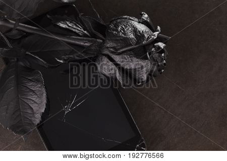 The concept idea is bad news. Sad message the mood of melancholy sadness and sorrow. Black rose and phone on white background isolated.
