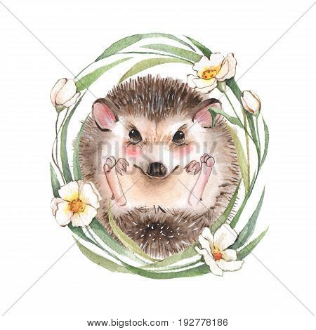 Cute hedgehog and flowers. Cartoon watercolor illustration