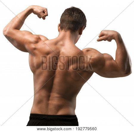 Body muscle bodybuilder sport beautiful person human