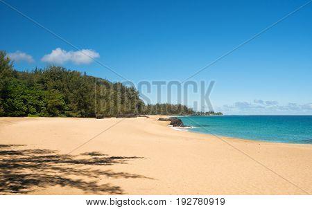 Golden sands with warm turquoise ocean off Lumahai Beach in Kauai in Hawaiian islands