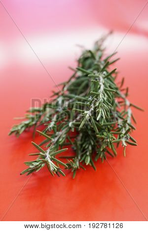 bunch of fresh rosemary with selective focus