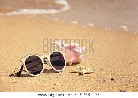 Sunglasses, shell and starfish on sand at sea shore. Vacation concept
