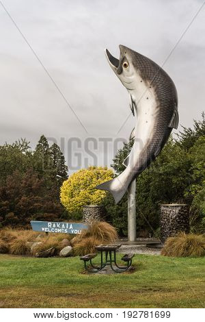 Rakaia New Zealand - March 14 2017: Giant Salmon statue welcomes visitors at entrance of Rakaia town. Green and yellow vegetation. Silver sky.
