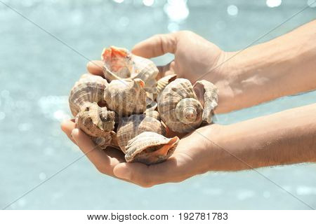 Male hands with sea shells on a beach