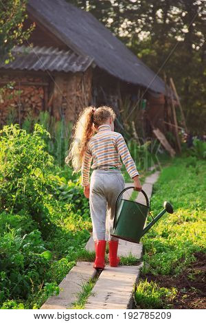 Cute little girl watering plants with watering can in garden. Child helping parents to grow vegetables. Soft light and soft focused to feeling relax and comfortable