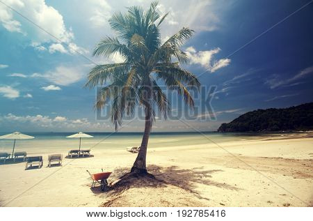 Tropical beach background with palm trees white sand and blue sky. Vintage effect