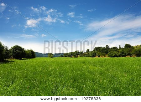 Grassland,nature background