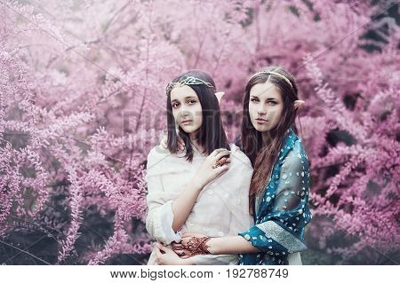 fairy tale girls. Portrai of mystic elven sisters. Cosplay character.