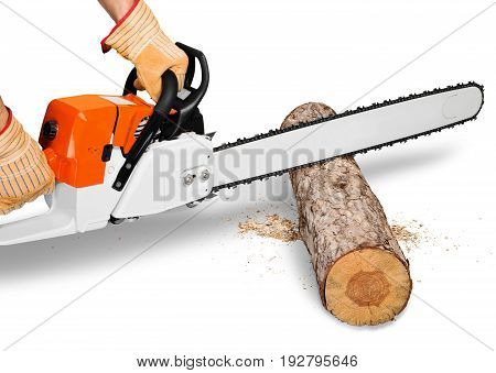 Cutting tree man chain saw chainsaw horizontal