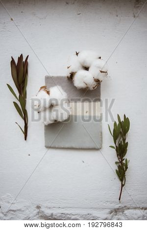 Top view on ceramic glazed sample with flowers of cotton and leucadendron on white background