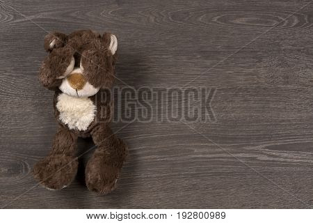 Sad Brown Teddy Bear On Wooden Background, Top View