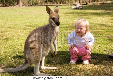 Happy Kangaroo