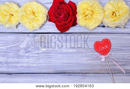 Buds of roses on a white wooden background and a red wooden heart on a stick