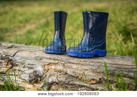 children's rubber boots stand on the beam the concept of camping and recreation