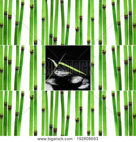 Still life with young bamboo sticks with green, leaf nd stacked stones,