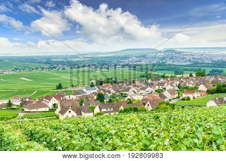 Scenic landscape in the Champagne Vineyards in the Montagne de Reims France