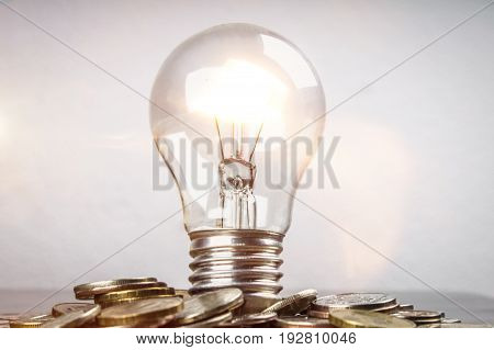 Light Bulb On Scattered Russian Coins On A Gray Background With Leaves Of Clover. Good Luck, St. Pat
