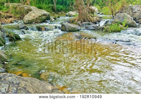 A closeup of a small bubbly pond off of a river with small waterfalls.