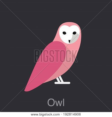 Owl Face Front , Bird Seris, User Interface