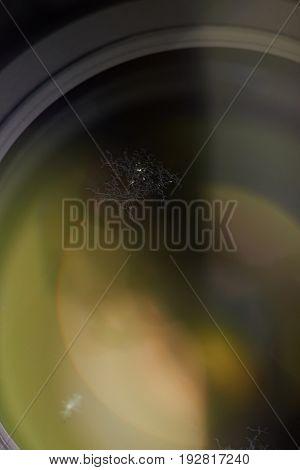 Closeup of fungus on optic lens. Humidity fungus disease on photography lens