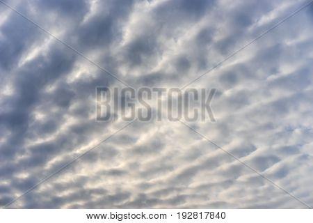beautiful nature morning blue sky Altocumulus cloud background
